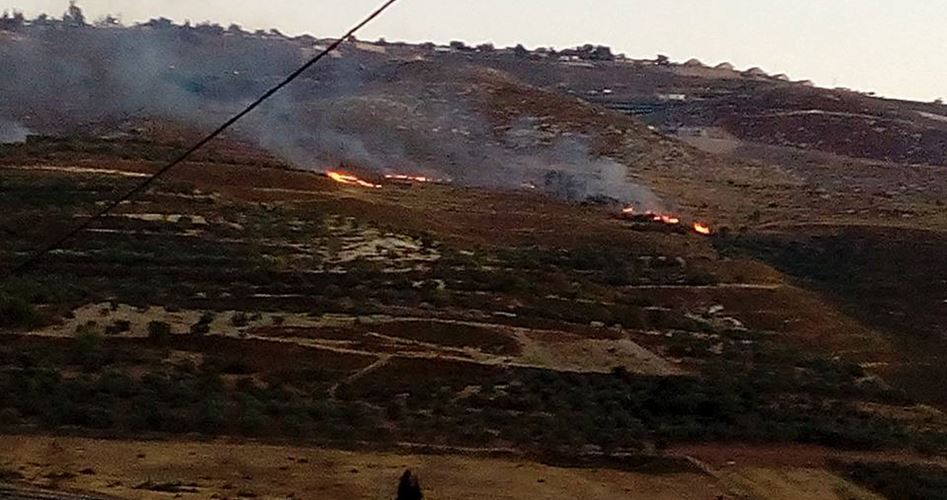 Israeli settlers, burn cultivated Palestinian lands in Yatta